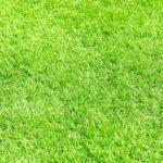 人工芝を設置するメリットとデメリットは?