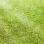 人工芝は土の種類でダメになってしまう?