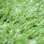 人工芝と天然芝のランニングコストの違い