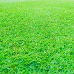 人工芝の設置を業者に依頼する際の注意点とは?