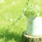 人工芝の衛生面は安全?