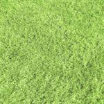 人工芝にカビが生えることはある?