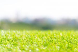 庭やグラウンドによって違いがある人工芝の種類について