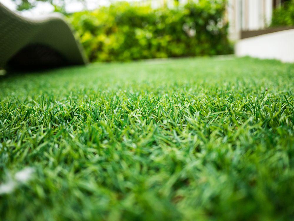 【おすすめランキング】値段から見た人工芝のおすすめ5選